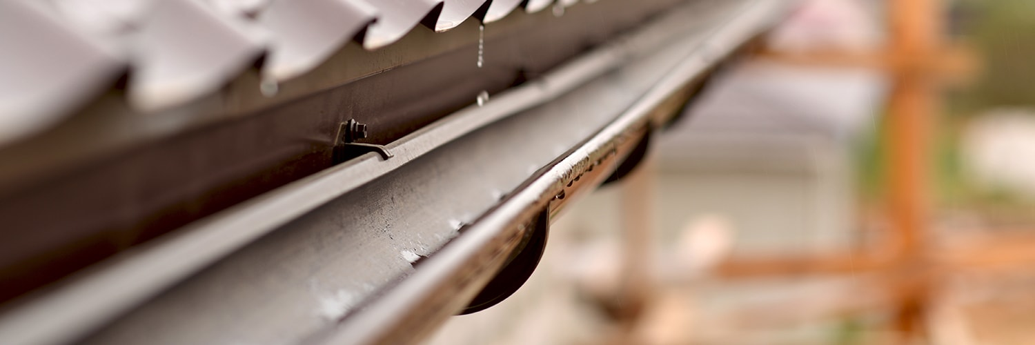 Which Gutter Guard & Leaf Guard to choose.